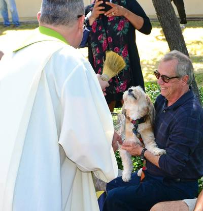 2017: Blessing Of The Pets - The Catholic Community Of