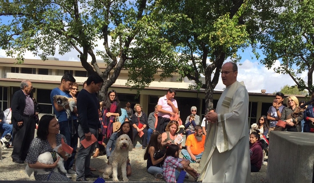 2016: Blessing Of The Pets - The Catholic Community Of